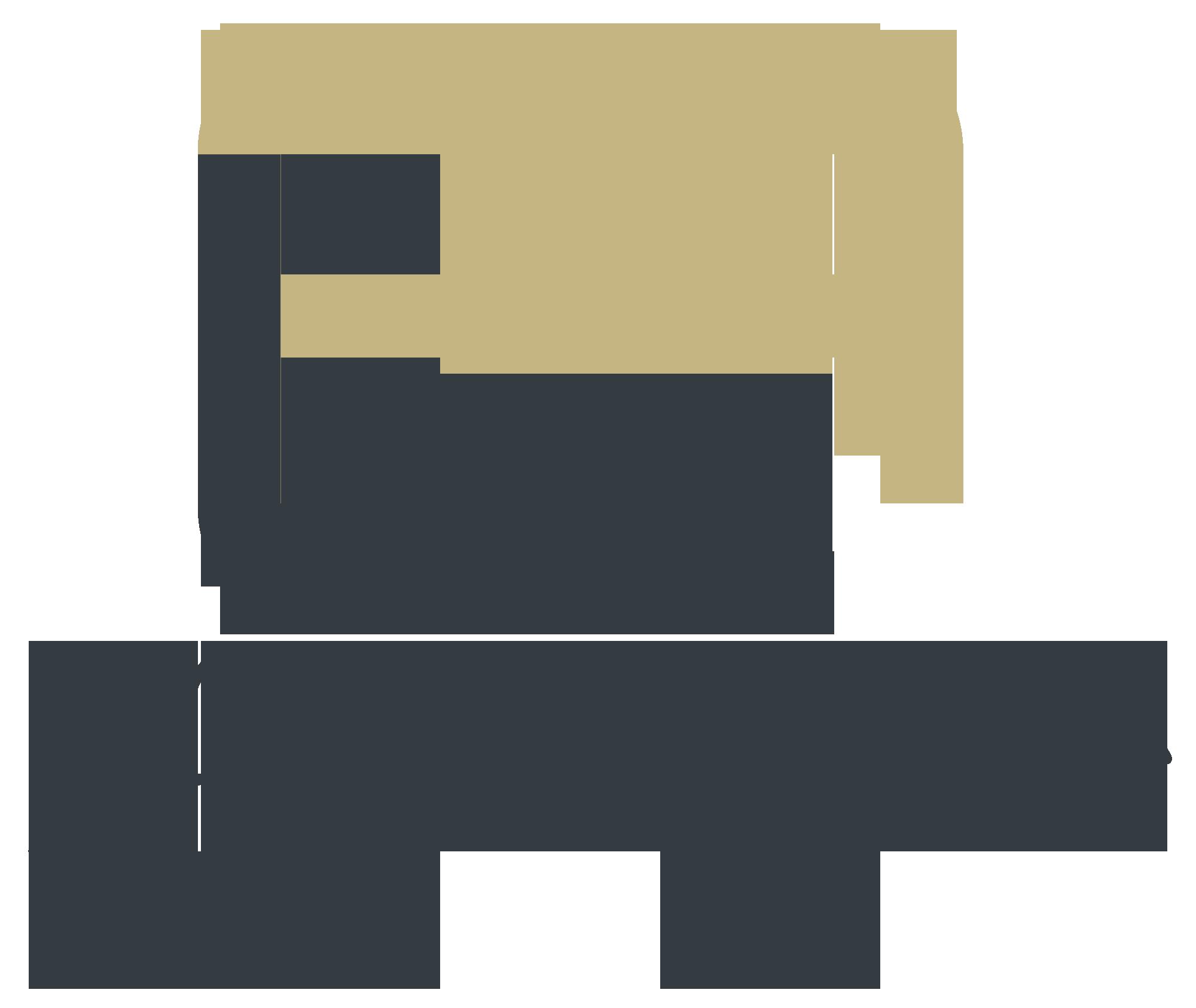 Aspire Leather